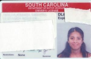 LicensePic